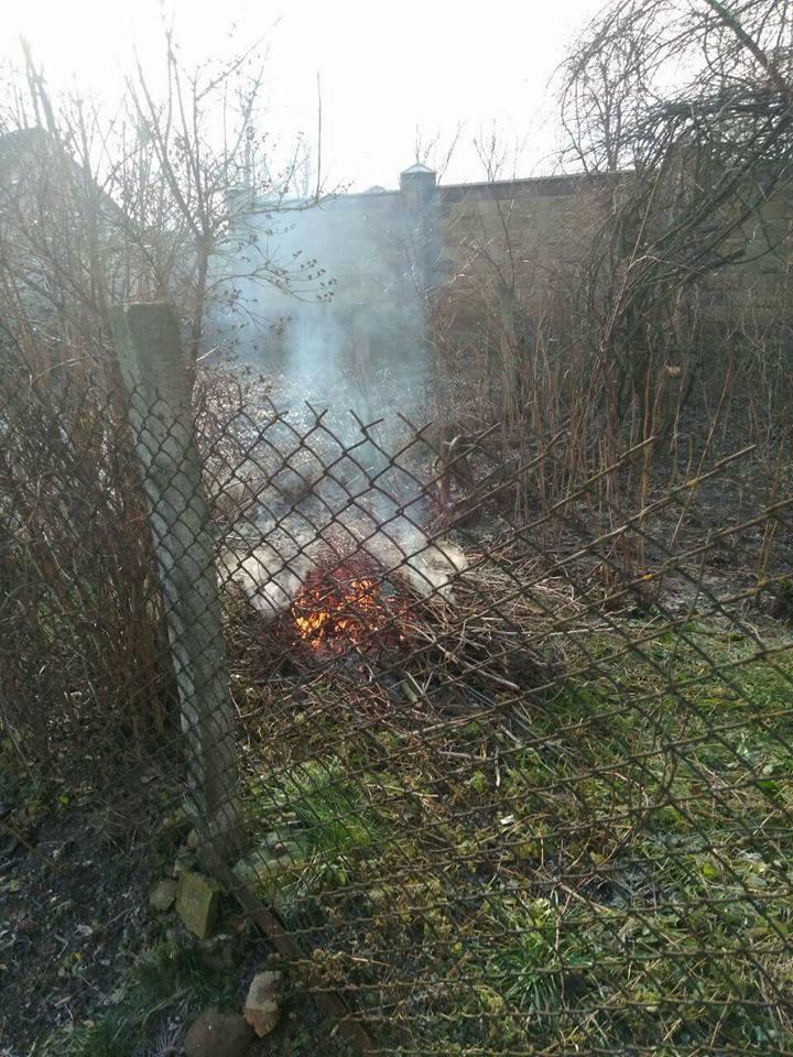 Лучанка отримала протокол за спалювання сміття