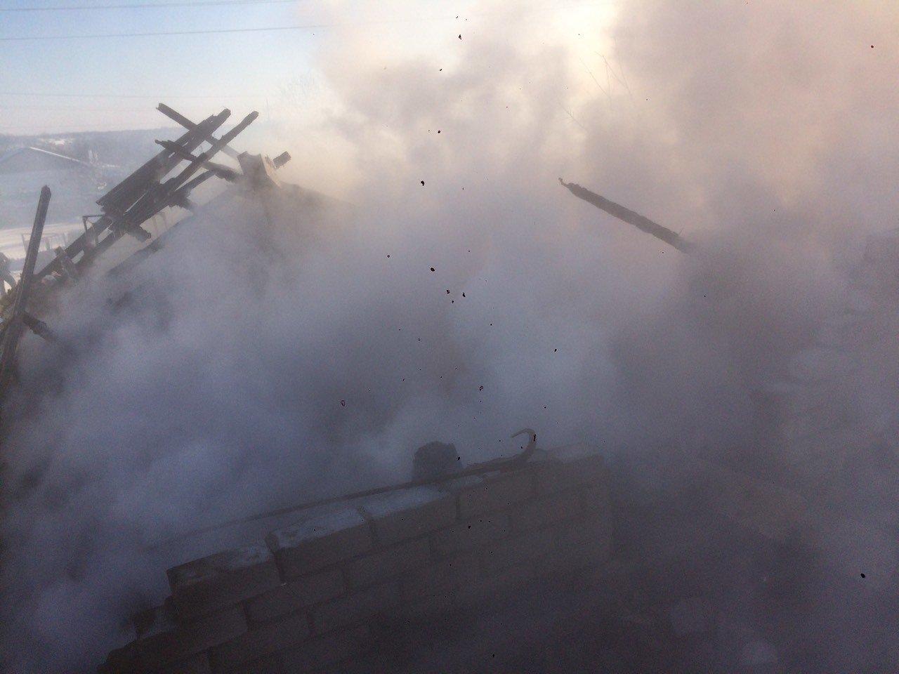 У Дніпрі згоріла перепелина ферма: загинули п'ять тисяч птахів