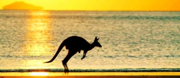 У Сіднеї зафіксували рекордну майже за 80 років спеку