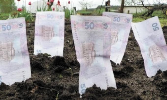 Луцькрада поновила оренду під будівництвом садово-огороднього центру