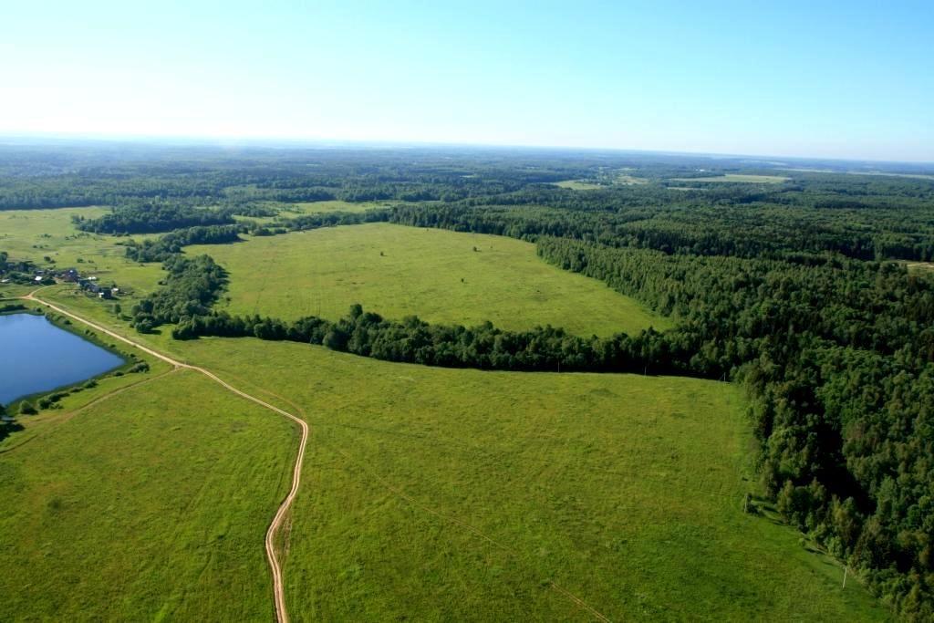 На Волині у підприємця вимагають повернути державі 12 гектарів землі
