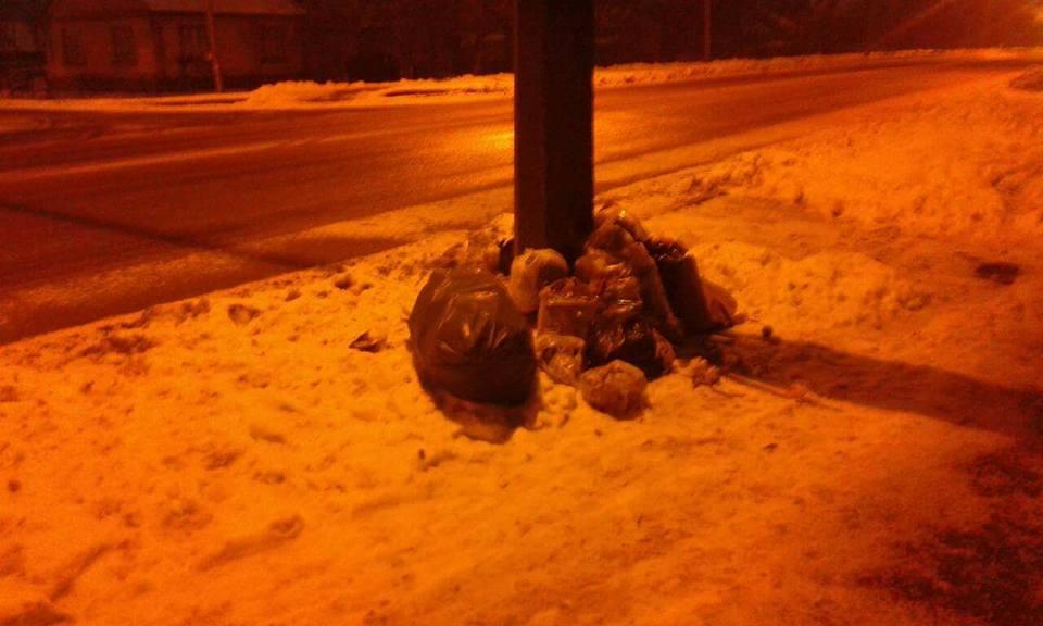 Лучани залишають сміття обабіч дороги. ФОТО