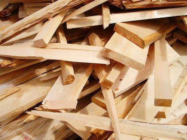 Волинські лісівники працюють над підвищенням ефективності використання деревини