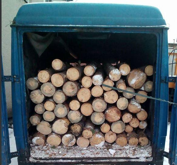На Волині затримали бус із незаконною деревиною