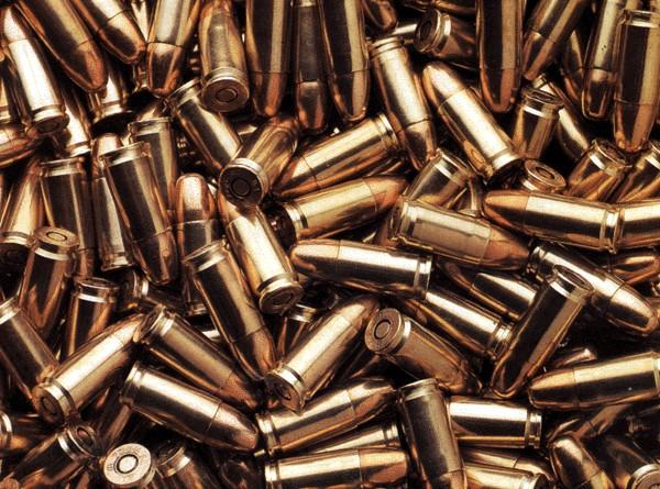 У Горохівському районі поліція вилучила понад 100 патронів