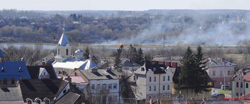 У Луцьку трапилась пожежа в заказнику