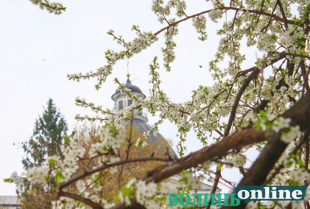 Яскрава весняна прогулянка Старим Луцьком. ФОТОРЕПОРТАЖ