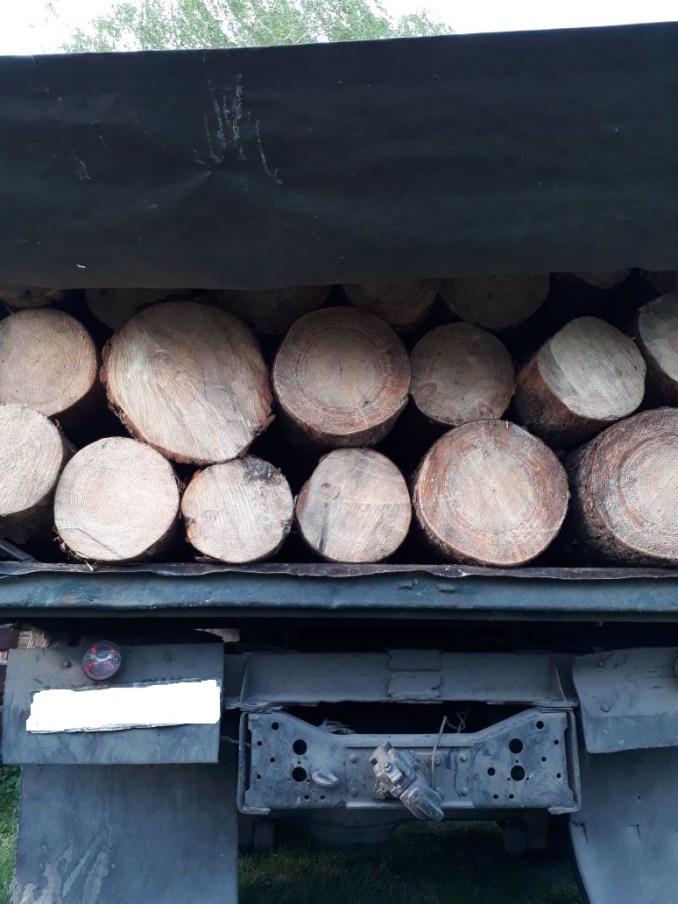 На Волині затримали вантажівку з деревиною без документів. ФОТО