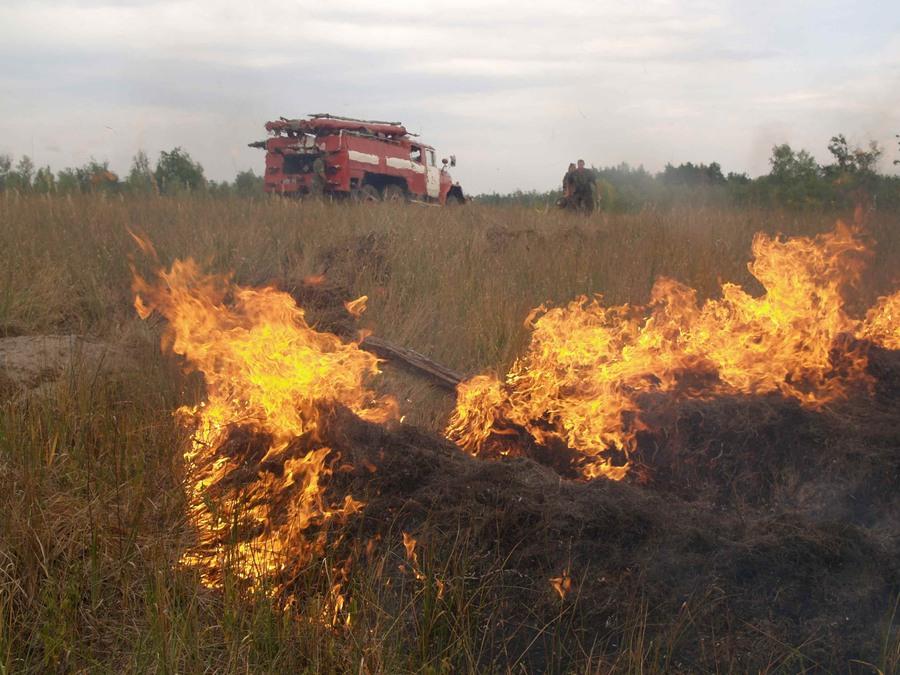За минулу добу на Волині ліквідували сім загорань сухої трави
