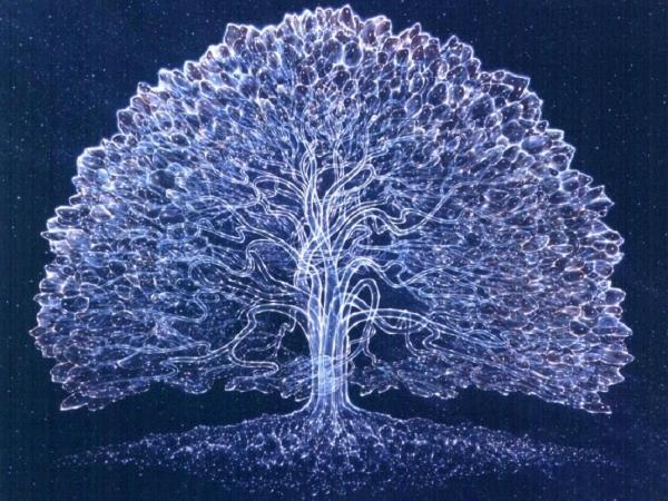 У Луцьку розкажуть, як знайти своїх предків та «виростити» генеалогічне дерево