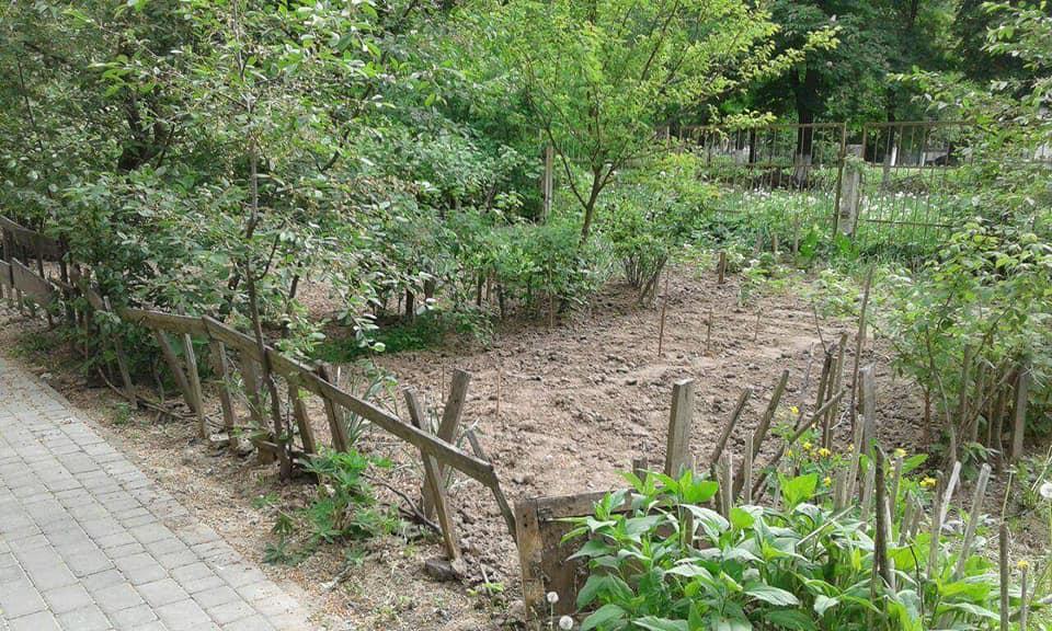 У Луцьку знесли самовільно облаштовані городи