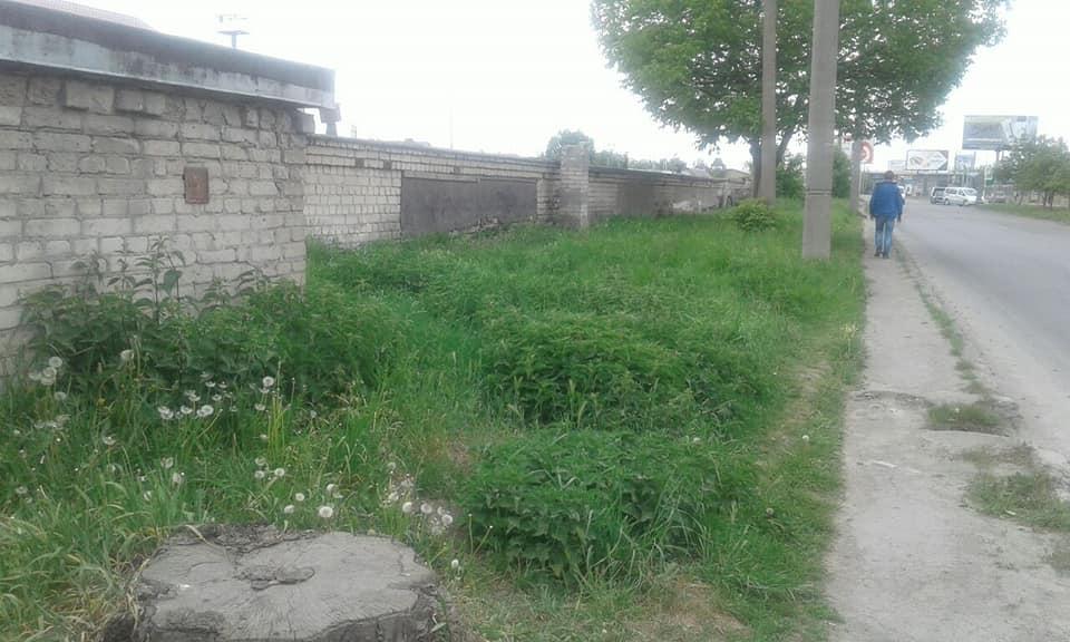 Луцькі муніципали видали більше ста приписів на косіння трави