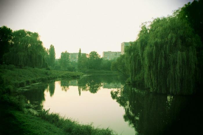 На реконструкцію парку 900-річчя потрібно понад 40 мільйонів гривень