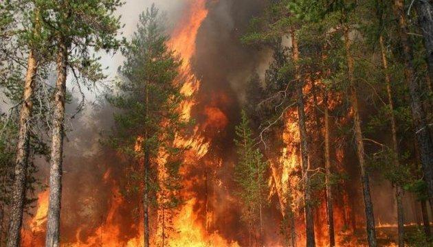 У Канаді через лісову пожежу оголосили евакуацію