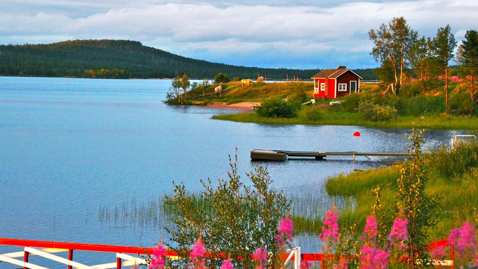 Фінляндію визнали країною з найчистішим повітрям у світі