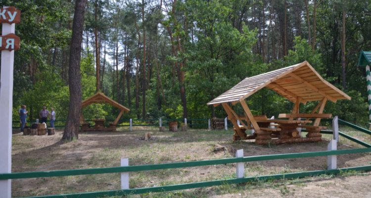 На Волині місця для відпочинку перевіряють на наявність кліщів