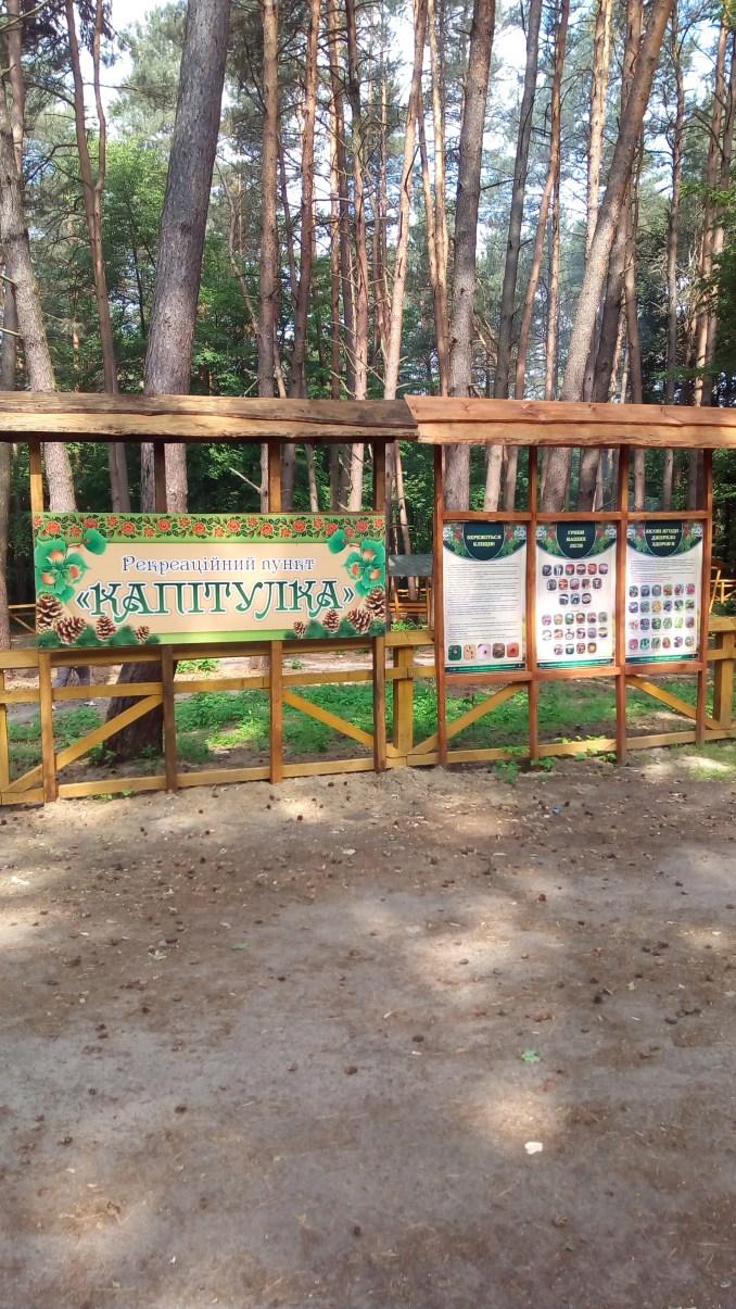 На Волині лісівники збудували новий рекреаційний пункт. ФОТО