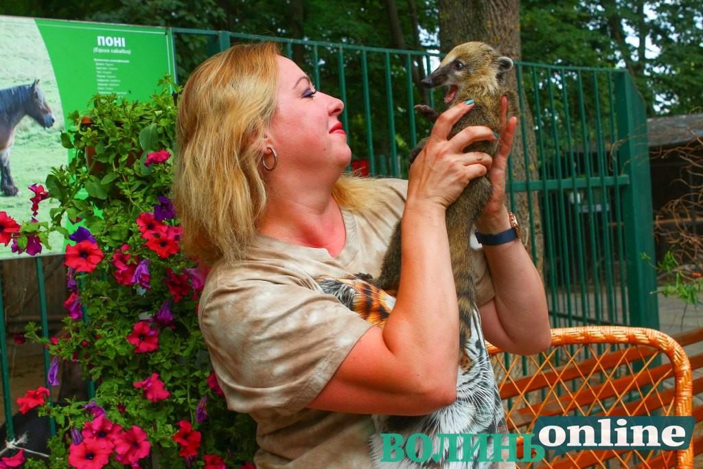 Як живе Луцький зоопарк після модернізації: збільшення видів тварин, свята для дітей та транскордонний туризм. ФОТО