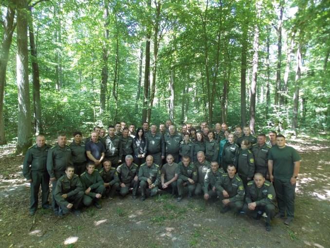 На Волині – високий клас якості лісових культур. ФОТО