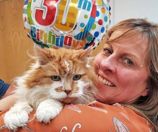 Найстаріша кішка у світі відсвяткувала 30-й день народження