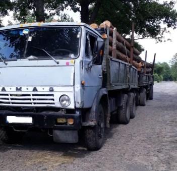 На Волині лісова охорона затримала «КамАЗ» із деревиною без документів