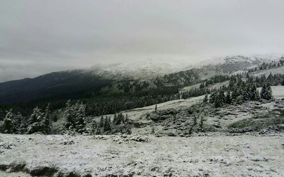 На Закарпатті через сніг у горах евакуйовують дитячий табір