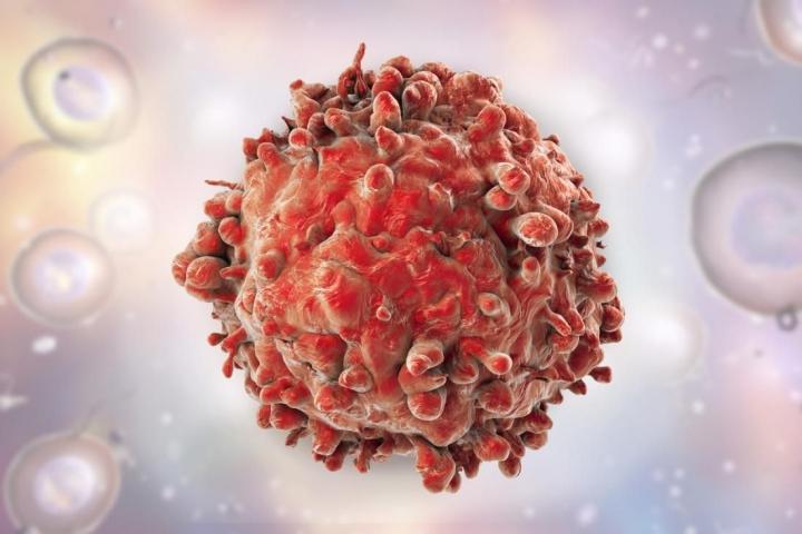 Ученим вдалося зупинити поширення клітин чотирьох типів раку