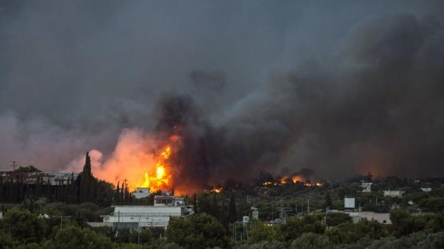 Пожежі у Греції: кількість загиблих 74, понад 180 постраждалих