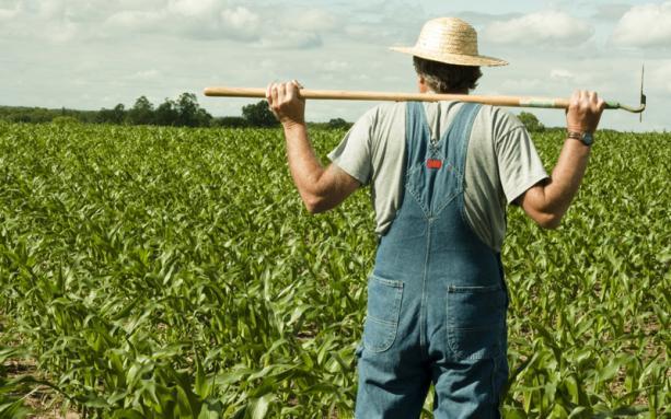 Волинські фермери можуть відкрити «Агросезон» у «ПриватБанку»
