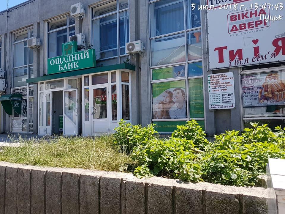 Муніципали покарали керівника «Луцьктепла» за нескошену траву