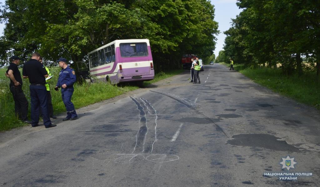 На Волині автобус з'їхав з дороги і врізався в дерево