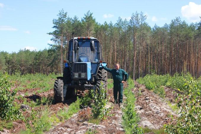 Показали, як проходить робочий день волинських лісівників. ФОТО