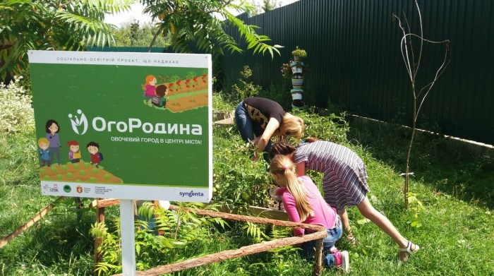 Як дітки доглядали за міським огородом у Луцьку. ФОТО