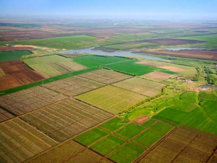 За позовами волинських прокурорів державі цьогоріч повернули 100 гектарів земель