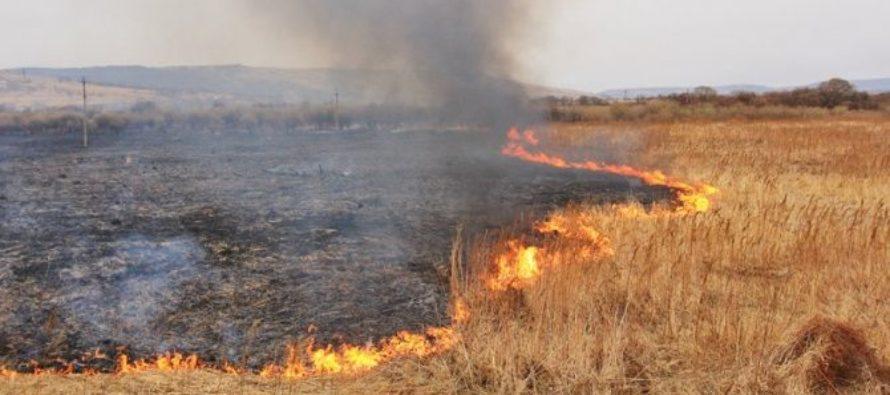 Минулого тижня на Волині трапилось 22 пожежі