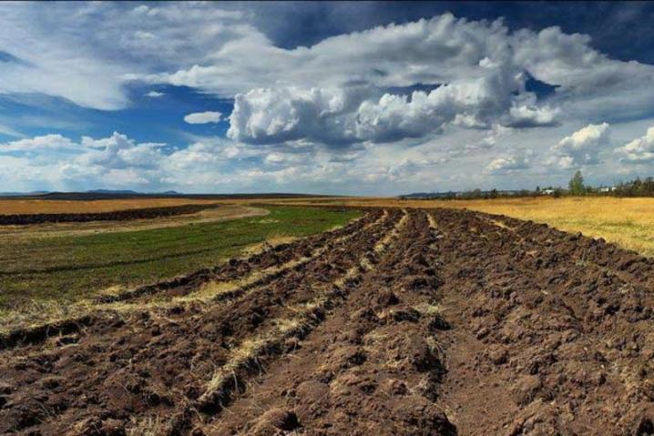На Волині від фермера вимагають повернути самовільно зайняту землю