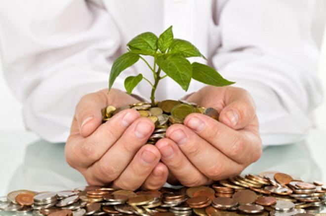 Волинь отримала 30 мільйонів гривень на два природоохоронні проекти