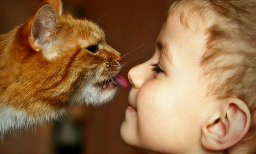 Спілкування з тваринами вчить людей дружити