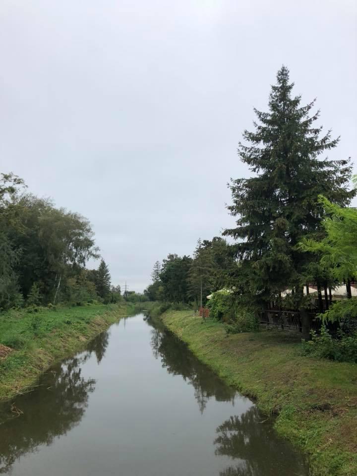 Як у центральному парку Луцька розчищали водні канали. ФОТО