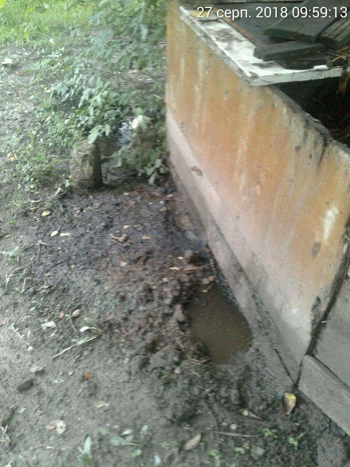 У Луцьку виявили купу гною, з якої гноївка витікає в Сапалаївку. ФОТО