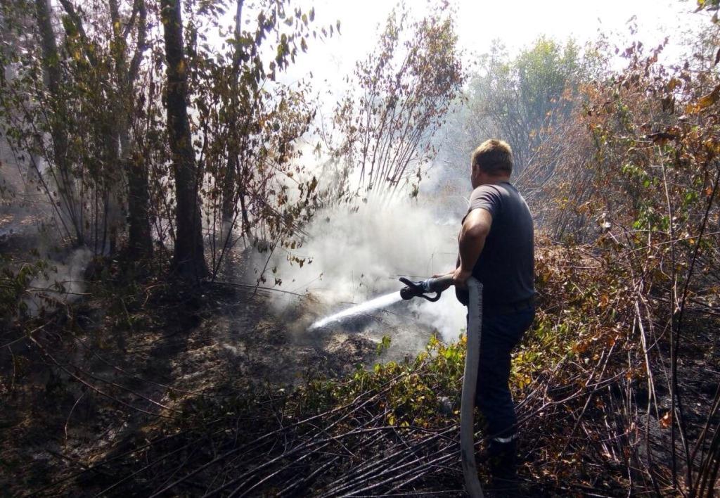 Волинянин спалював суху траву і спричинив пожежу