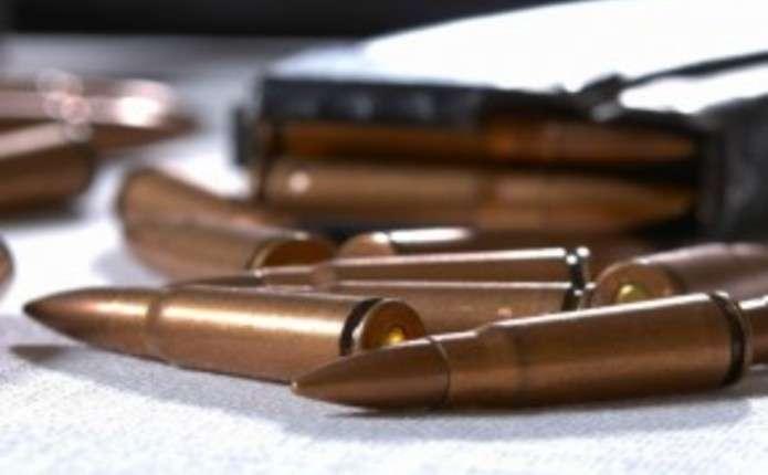 Поліція Волині за добу вилучила в жителів області майже сотню набоїв