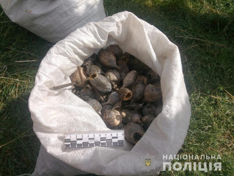 У Маневицькому районі поліція вилучила макову соломку