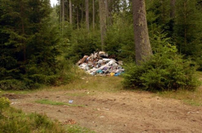 На Волині ліквідували стихійне сміттєзвалище