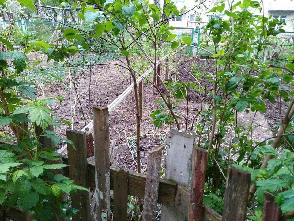 У Луцьку триває демонтаж незаконно встановлених споруд