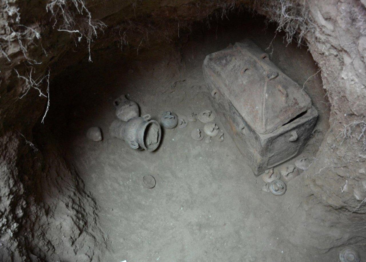 Грецький фермер знайшов 3400-річне поховання під оливковим деревом