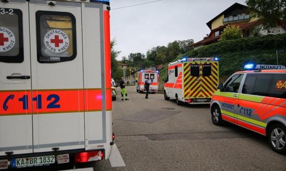 На гостей німецького фестивалю напав рій шершнів: госпіталізували 13 осіб