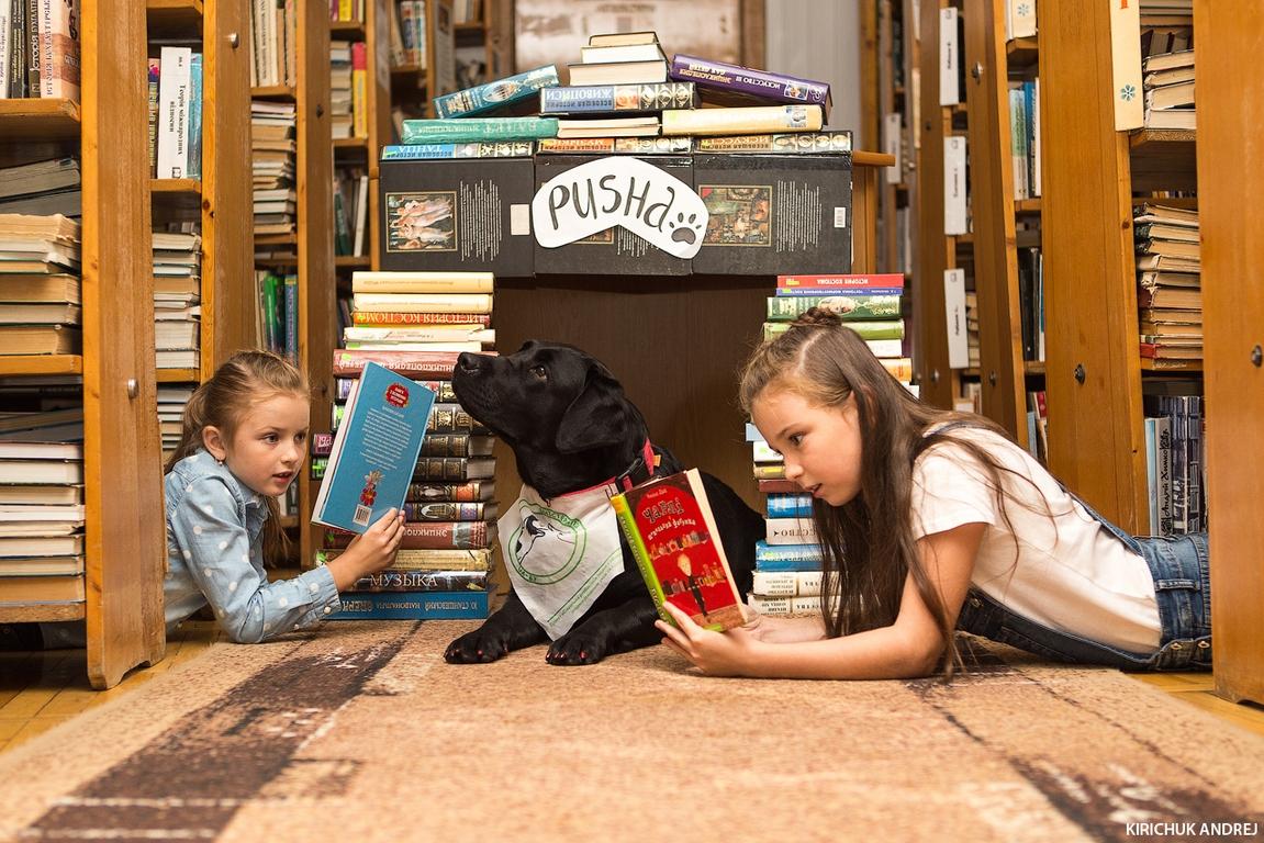 У Волинській обласній бібліотеці для юнацтва  відбулись заняття проекту із каністерпії