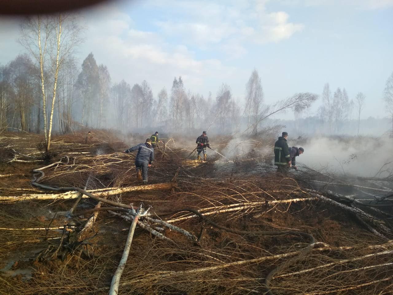 На Волині за минулий тиждень – 13 пожеж на торфовищах