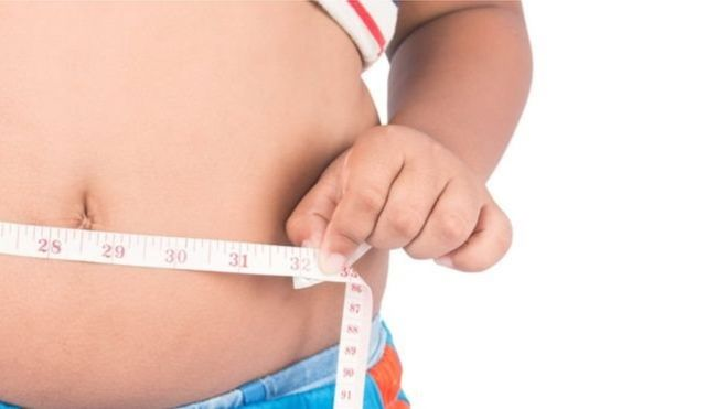 Вчені випадково відкрили «білок для схуднення»
